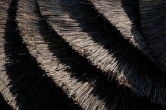 Stuck of beach umbrellas made of reeds at the beach. Stock Photo