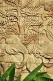 Stuckatur sniden vägg som visar elefanter Fotografering för Bildbyråer