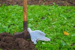 A stucked in de grondschop en landbouwers` s werkende handschoenen Stock Fotografie