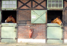 Stud farm. The stud farm of Jardy, called in France Le Haras de Jardy, located between Paris and Versailles stock photos