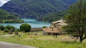 The stud farm by the Llosa del Cavall lake, Lleida province,  Spain. Royalty Free Stock Photos