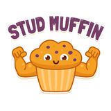 Stud Muffin illsutration. Stud Muffin, funny illsutration. Cute cartoon muscular muffin flexing biceps Royalty Free Stock Photos