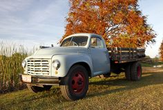 Studebaker delivery truck. A vintage Studebaker delivery truck still in service in a central Florida citrus farm Stock Photography