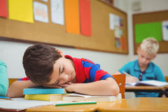 Student asleep on a desk Stock Images