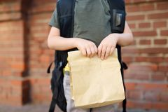 Student with big backpack and lunch bag near the school building. Hands and lunch bag close-up. Back to school royalty free stock photo