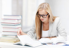 Student with books and notes Royalty Free Stock Images