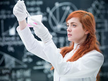 Student chemical experiment Royalty Free Stock Image