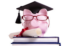Student college graduate Piggy Bank degree diploma certificate isolated on white Stock Photos
