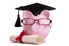 Student college graduate Piggy Bank degree diploma isolated on white, education success concept Royalty Free Stock Photos