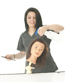 Student Cosmetologist Spraying the Head Royalty Free Stock Photo