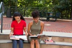2 Student, der auf dem Campus studiert Lizenzfreie Stockbilder
