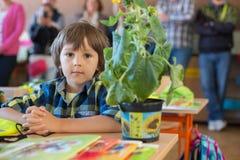 Student des ersten Grades der Junge, der am Schreibtisch an seinem ersten Tag an Sc sitzt Stockfotografie