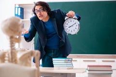 Student des m?nnlichen Lehrers und des Skeletts im Klassenzimmer lizenzfreie stockfotos