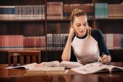 Student die voor examen voorbereidingen treffen royalty-vrije stock fotografie