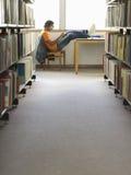 Student-Doing Homework In-Bibliothek lizenzfreies stockfoto