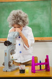 Student dressed up as einstein using a chemistry set. At the elementary school Royalty Free Stock Photos