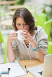 Student drinking coffee while using laptop at cafeteria table Royalty Free Stock Image