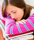 Student fallng asleep Royalty Free Stock Image
