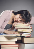 Student fell asleep Stock Photography
