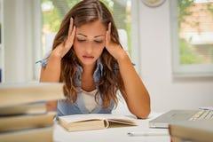 Student Girl Learning stock afbeeldingen