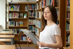 Student girl in a library. Portrait of a concentrated girl standing reading in the school library royalty free stock images