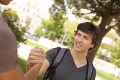 Student handshake. Happy young student giving a handshake to his classmate (selective focus Stock Photo