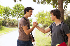 Student handshake Stock Photography