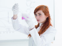 Student laboratory analysis Royalty Free Stock Photography