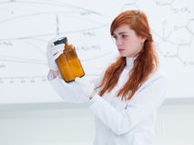 Student laboratory analysis Stock Image