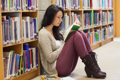 Student leaning against a shelf in a library Royalty Free Stock Photography