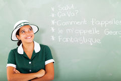 Student learning french Royalty Free Stock Images