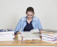 Student learns Royalty Free Stock Image