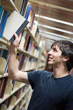 Student At the Library Stock Photos