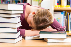 Student in library asleep over books Royalty Free Stock Image