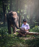 Student little asian boy with him elephant Royalty Free Stock Photos