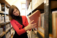 student in a llibrary Royalty Free Stock Photos