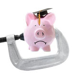 Student loan piggy bank vice Royalty Free Stock Photo