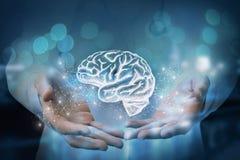 Student medycyny pokazuje w rękach mózg obraz royalty free