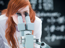 Student microscope analysis Royalty Free Stock Images