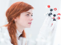 Student molecular analysis Royalty Free Stock Photo
