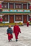 Student Monk Arkivfoto