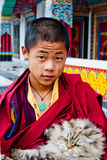 Student Monk. A child Buddhist student with a cat in his lap at Ralang Monastery, Sikkim, India Stock Photo