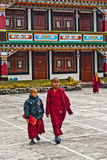 Student Monk. Two children Buddhist students at Ralang Monastery, Sikkim, India Stock Photo