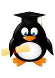 Student penguin Stock Photos