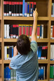 Student picking a book from shelf in library Royalty Free Stock Images