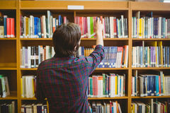 Student picking a book from shelf in library. At the university Royalty Free Stock Image