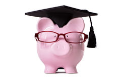 Student Piggy Bank college graduate front view, education savings concept Royalty Free Stock Photos