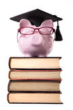 Student graduate Piggy Bank college graduation Stock Image