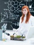 Student plant analysys Stock Photography