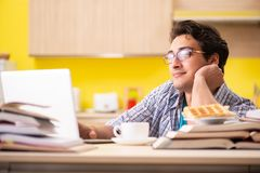 The student preparing for exam sitting at the kitchen royalty free stock images